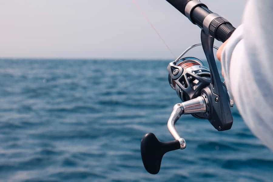 Best saltwater spinning reels for the money