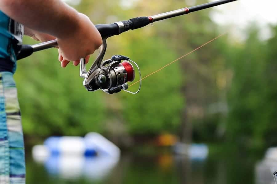 Complete guide to fishing spinning reels