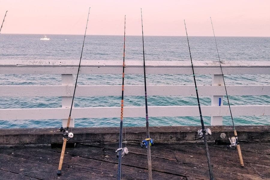 Types of fishing rods for spinning reels